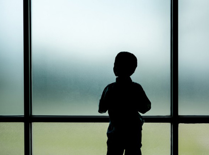 Looking through the Windows - Understanding children and young people with Autism (Online)